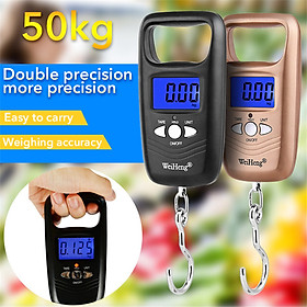 Mini Digital Scale For Fishing Luggage Portable Weighting Steelyard Electronic Hanging Hook Pocket Travel Scale 50kg/110lb