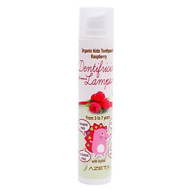 Gel Đánh Răng Vị Dâu Rừng Organic Toothpaste Raspberry Azeta Bio GDR004 (50ml)