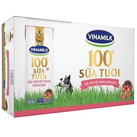 Thùng 48 Hộp Sữa Tươi Tiệt Trùng Vinamilk 100% Hương Dâu (180ml)