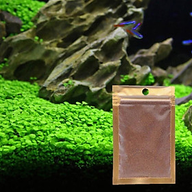 Hạt giống thuỷ sinh - trân châu ngọc trai lá nhỏ
