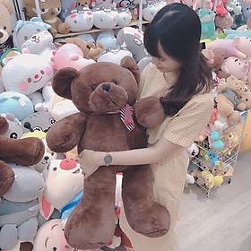 Gấu Bông Teddy nâu Khăn len 80cm