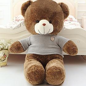 Gấu Bông Teddy Mặc Áo Len Hàng Nhập Khẩu