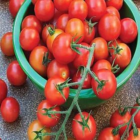 [Chỉ giao HN] - Cà chua - 1kg