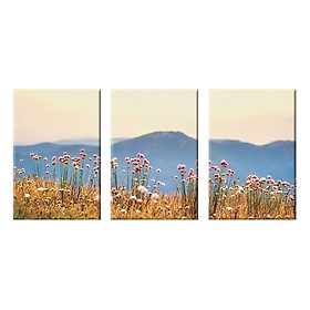 """Bộ 3 Tranh Canvas """"Đồng Hoa Dại""""- W119"""