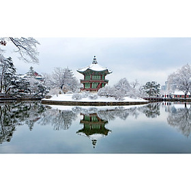 Liên Tuyến Hàn Quốc - Nhật Bản (Khởi hành từ Đà Nẵng)