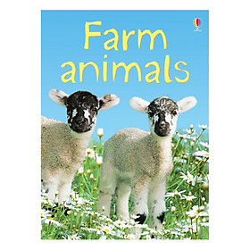Usborne Farm animals