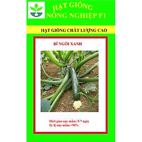 Gói 50 hạt giống bí ngòi xanh