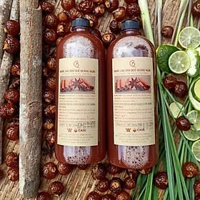 Combo 2 Chai Nước Lau Sàn Organic Kháng Khuẩn Khử Mùi Hương Quế Đuổi Muỗi Kiến Gián Hiệu Quả