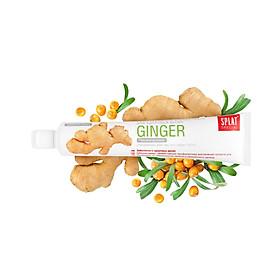 Kem Đánh Răng Splat Ginger Special Series (75ml)