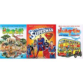 Combo 3 Chủ Đề Ghép Hình Phát Triển Trí Tuệ: Superman + Động Vật Hoang Dã + Phương Tiện Giao Thông