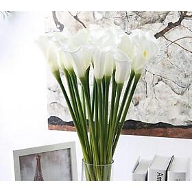 Hoa giả, combo 5 cành hoa loa kèn silicon cỡ lớn sang trọng trang trí nhà cửa, bàn ăn, nhà hàng, quán cafe,...