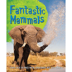 Fast Facts! Fantastic Mammals
