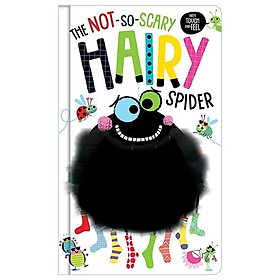 The Not-So-Scary Hairy Spider