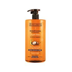 Dầu gội tinh chất Argan và Bơ Hạt Mỡ dành cho tóc khô và hư tổn Shampooing Argan Divin Evoluderm 1000ml - 15269