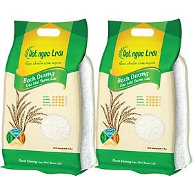 Combo 2 sản phẩm Gạo Hạt Ngọc Trời Bạch Dương Túi 5Kg - Thơm lài, ít dẻo, mềm cơm