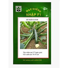 Gói 20 hạt giống bí ngòi xanh