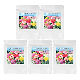 Bộ 5 túi 20 Hạt Giống Hoa Cúc Lá Nhám Kép - Flan Mix (Zinnia)