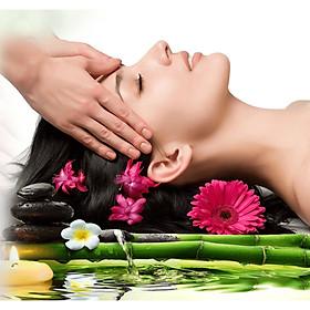 Chăm sóc tóc bằng thảo dược LESSAM Spa( 40')