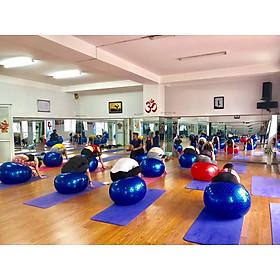 Bóng Tập Yoga, Bóng Yoga Tròn Cỡ Đại 75cm Cao Cấp - Chính Hãng (Hàng nhập khẩu)-2