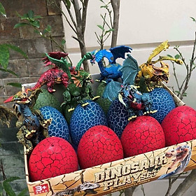 Set 12 trứng khủng long lớn MK
