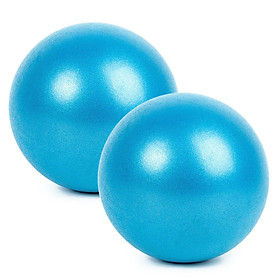 25cm 2 Pcs Yoga Ball Anti-burst Thick Stability Ball Mini Pilates Barre Physical Ball