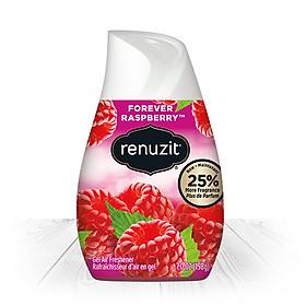 Sáp Thơm Phòng Renuzit Forever Raspberry 198g