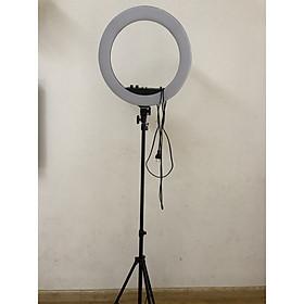 Đèn hỗ trợ livestream 45cm kèm chân đèn 2m1