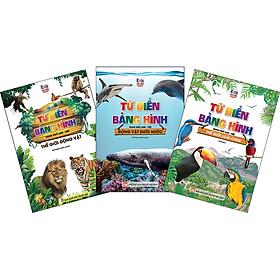 Combo 3: Cuốn Thế Giới Động Vật- Động Vật Dưới Nước - Thế Giới Loài Chim