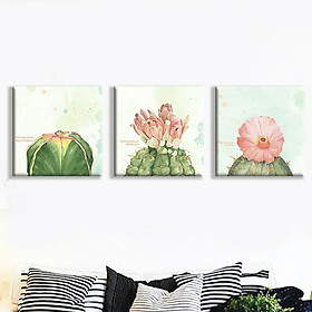 """Bộ 3 Tranh Canvas Viền Composite Treo Phòng Khách """"Hoa Xương Rồng"""" W103"""