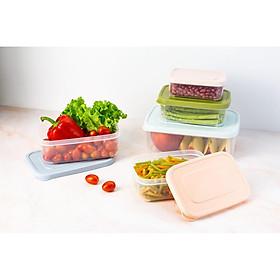 Bộ 6 hộp nhựa đựng thực phẩm chữ nhật Inochi (500-750-1000-1500-2000-2500ml)