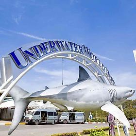Hình đại diện sản phẩm Vé Underwater World Pattaya - Trẻ em cao 90-130cm