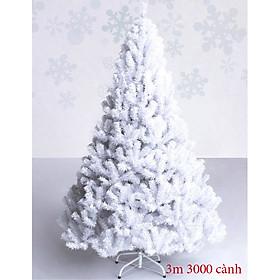 Cây thông noel 3m cước trắng