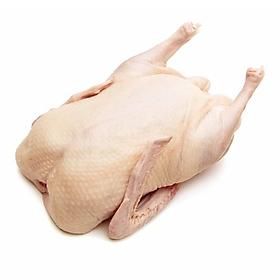 [Chỉ giao HN] - Thịt vịt quê