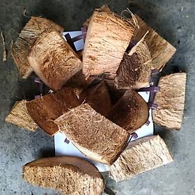Túi 6.5 lít - Giá Thể Vỏ  Dừa - Xơ Dừa Trồng Lan Đã Xử Lý Mềm Xốp - THÍCH HỢP TRỒNG LAN - DENRO - MOKARA