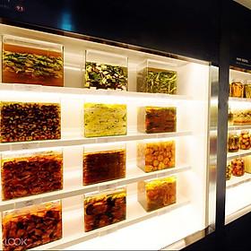 Vé Tham Quan Bảo Tàng Kimchikan, Seoul, Hàn Quốc