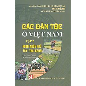 Các Dân Tộc Ở Việt Nam - Tập 2: Nhóm Ngôn Ngữ Tày - Thái KaĐai