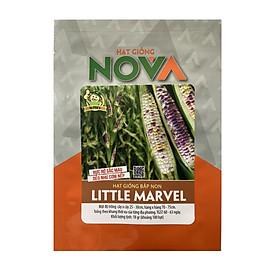 Hạt giống bắp non Little Marvel - dẻo ngon như cơm nếp, màu sắc đẹp, dinh dưỡng cao, bắp mini nhiều màu, cây từ 3 đến 5 trái
