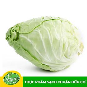 Bắp cải tim hữu cơ Organicfood - 350g