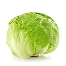 Bộ 1 gói Hạt giống rau xà lách cuộn