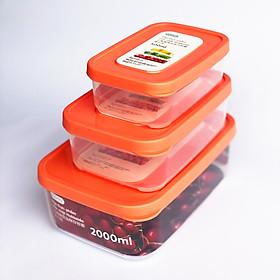 Bộ 3 Hộp Nhựa Đựng Thực Phẩm, Thức Ăn Hokkaido Chữ Nhật - Nhựa Cao Cấp Trong Suốt Bền Kín Chịu Nhiệt Cao Tiêu Chuẩn Nhật - Hàng Chính Hãng