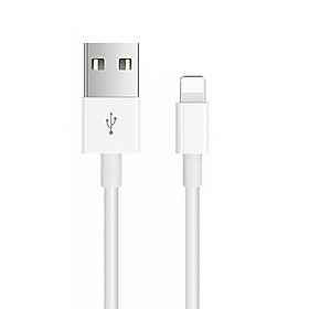 3ft Lightning to USB A Cable 1 Meter Lightning Charging Cable Cell Phone Power Cord Compatible with Apple iPhone iPad