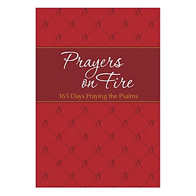 Prayers On Fire: 365 Days Praying The Ps