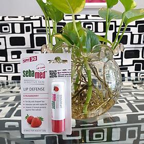 Son dưỡng chống khô nứt môi hương dâu màu đỏ mọng Sebamed pH5.5 Sensitive Skin Lip Defense Strawberry 4.8g-1