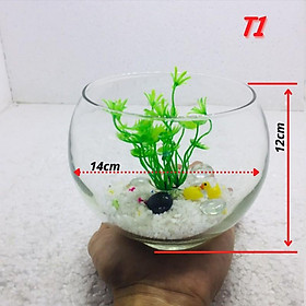 Bể cá mini TRÒN( TẶNG PHỤ KIỆN), chậu cá thủy tinh chọn mẫu