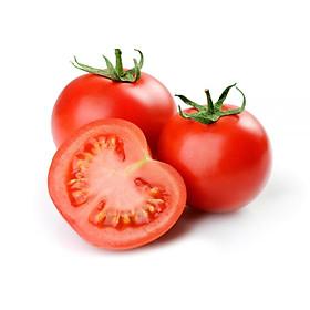 [Chỉ Giao HCM] - Cà chua Dak Nông (khay khoản 500gr) - Hàng vườn, hướng hữu cơ trồng tự nhiên, giòn ngọt vượt trội