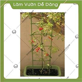 COMBO 2 KHUNG TRỒNG CÂY HÌNH TAM GIÁC làm từ  ống tre thép bọc nhựa IBO và thanh liên kết Sapoto - Dùng làm khung, giàn cho hoa hồng leo, cây hoa leo