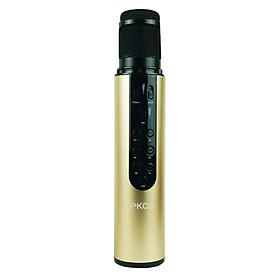 Micro Karaoke Bluetooth Không Dây Âm Thanh Chuẩn, Tiện Dụng Dễ Dàng Mang Theo PKCB - Hàng Chính Hãng