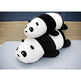 Hình đại diện sản phẩm Combo thú nhồi bông Gấu trúc Panda nằm lớn - vừa BA00091