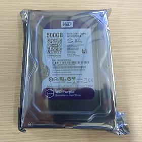 Ổ cứng HDD WD 500GB tím - Hàng nhập khẩu