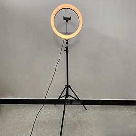 Bộ tripod, giá đỡ livestream gắn đèn Led 3 chế độ (36cm), kèm kẹp điện thoại - Hỗ trợ ánh sáng chụp ảnh, livestream, quay tiktok hiêu quả - Hàng chính hãng